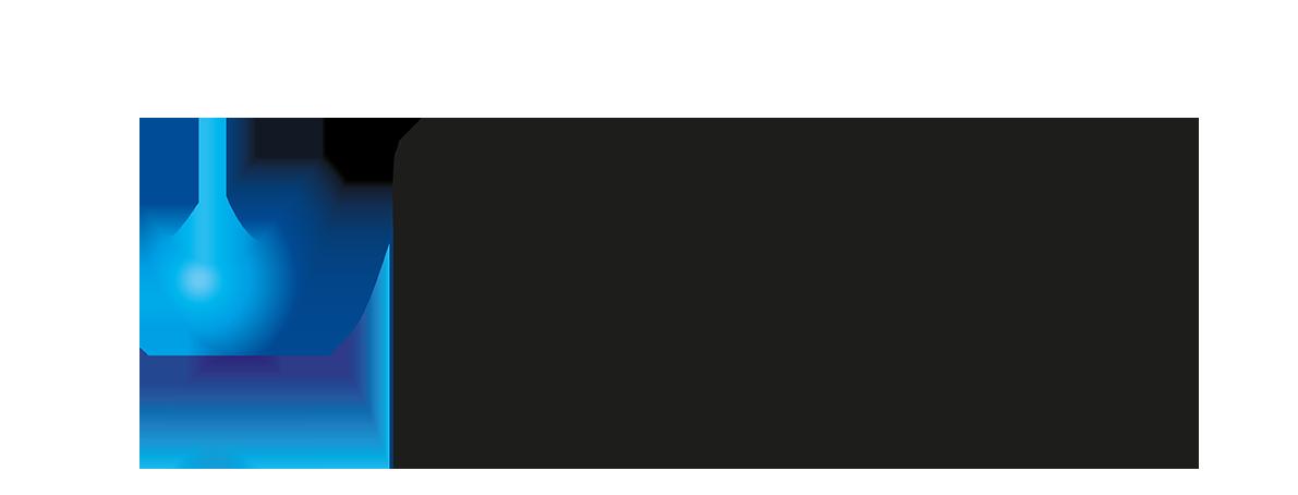 Validis_logo
