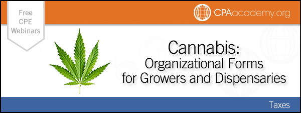 Hobanfeola cannabis
